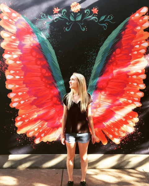 Alebrije wing wall California Adventure